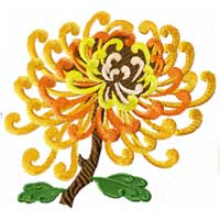 Chinese chrysanthemum 8 Machine embroidery designs set