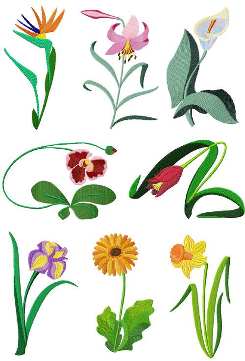 Garden #1: 8 Garden Flowers Machine Embroidery Designs set 5x7